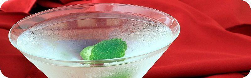 Martini Seco Casero